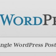 display-single-wordpress-post-category-sub-category