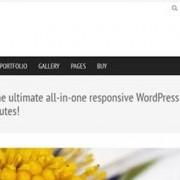 themeforest-natural-responsive-wordpress-business-theme