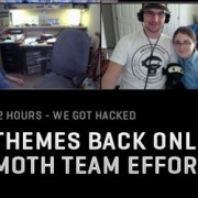 woothemes-hacked-ddos-attack-downtime