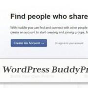 premium-wordpress-buddypress-themes