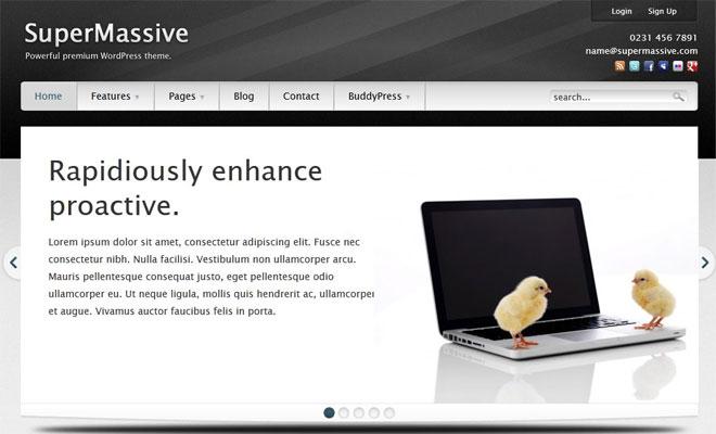 SuperMassive Business WordPress BuddyPress Themes
